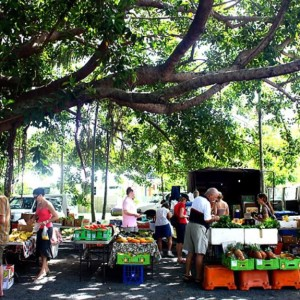 port-douglas-markets