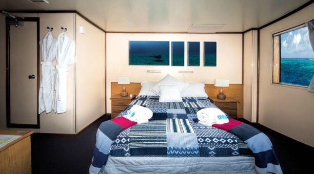 Top Deck Club Cabin - Double Bed