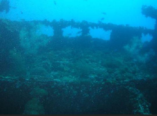 Yongala Wreck dive trips