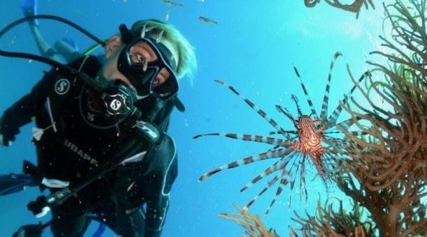 Scuba Dive the Great Barrier Reef, Australia