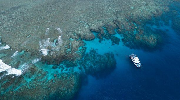 Reef Experience - Norman Reef