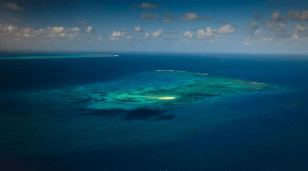 aerial view of Michaelmas Cay, North Queensland