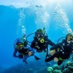 Introductory Scuba Dive