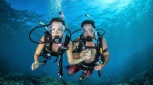 scuba dive day tour