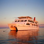 Great Barrier Reef SNORKELLING DEAL – Liveaboard