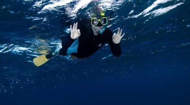 Cairns snorkel tour