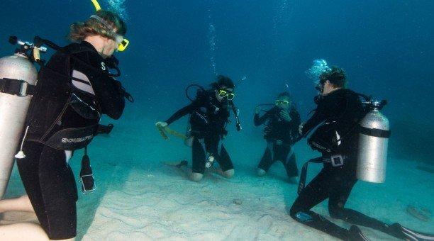 learn to scuba dive Australia