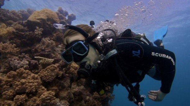 Learn to scuba dive, Great Barrier Reef Australia