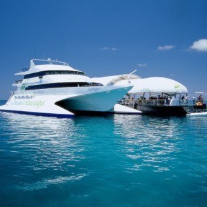 Whitsundays reef pontoon