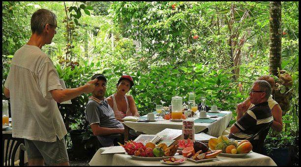 Enjoy native tropical fruits