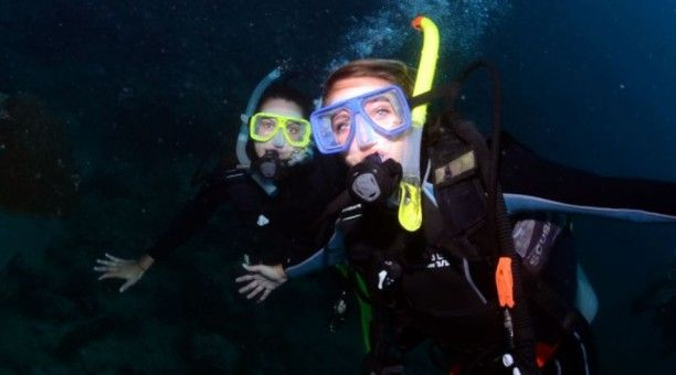 Night scuba dive, Great Barrier Reef Australia