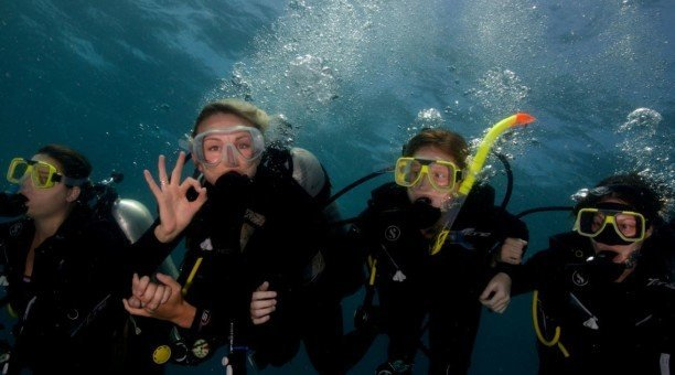 resort dive on Australia's Great Barrier Reef