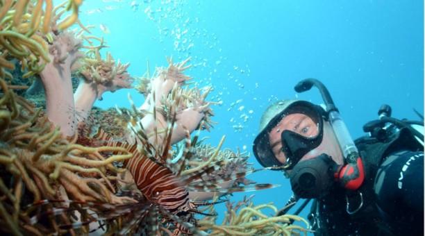 Top Deck Referral Dive Course
