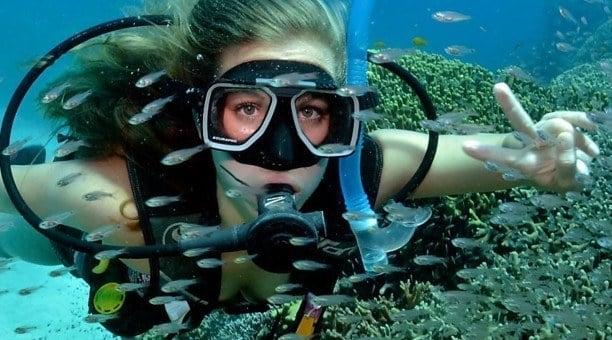 Great Barrier Reef Scuba diving Cairns Australia