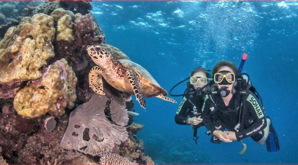 4 Day Referral Dive Course Stateroom
