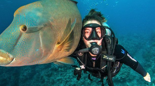 Learn to Scuba Dive and Daintree Rainforest (4 Days)
