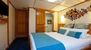Stateroom Spirit of Freedom North Queensland Dive Expeditions Australia