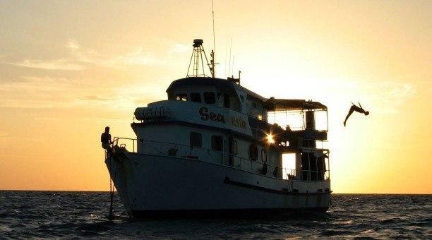 Dive the SS Yongala