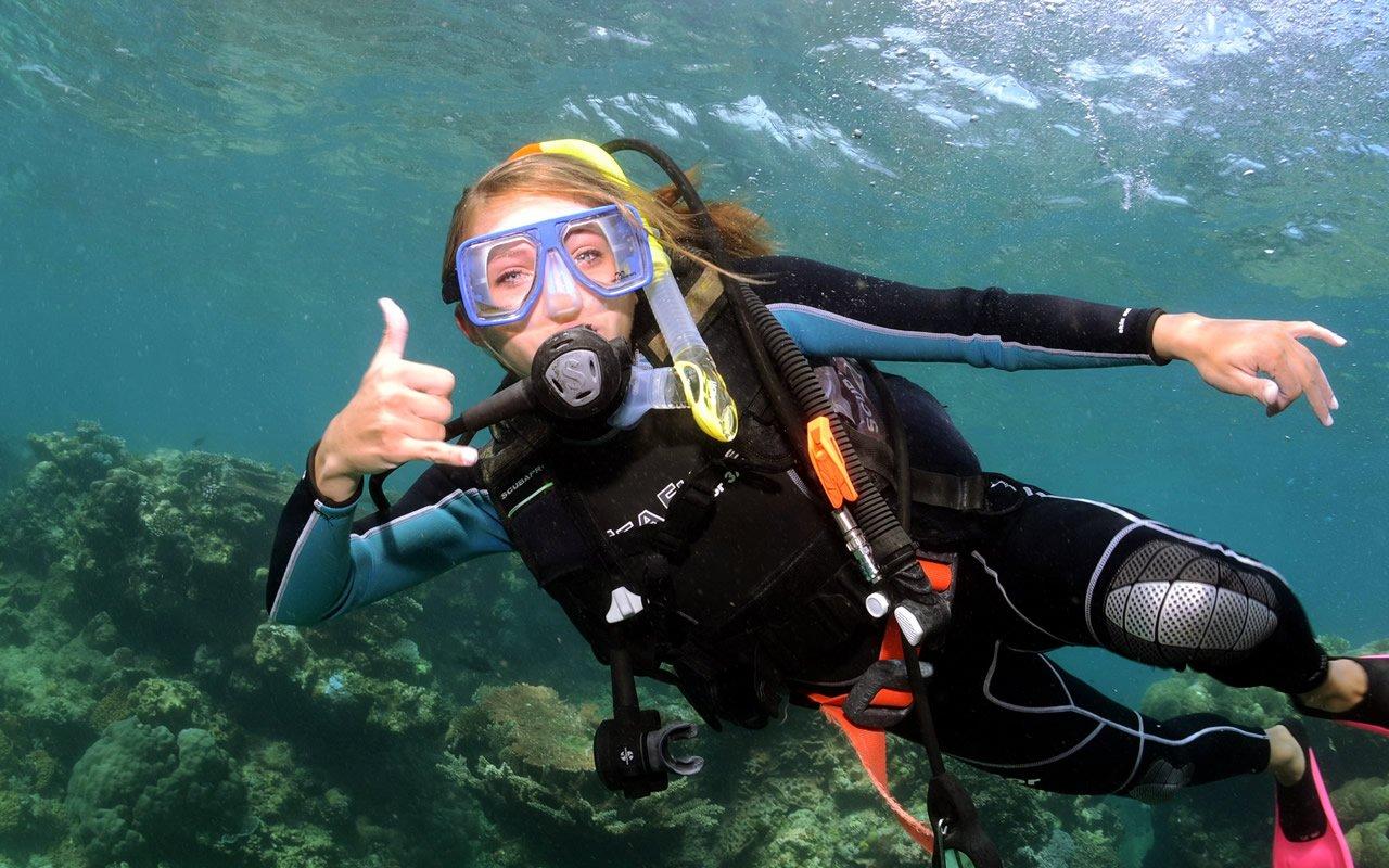 Lessons liveaboard diving - Dive great barrier reef ...