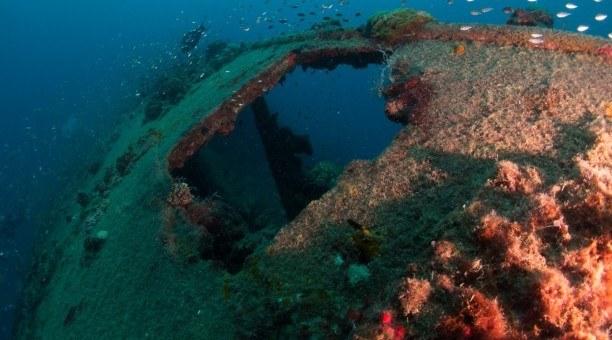 S.S. Yongala Shipwreck Dive