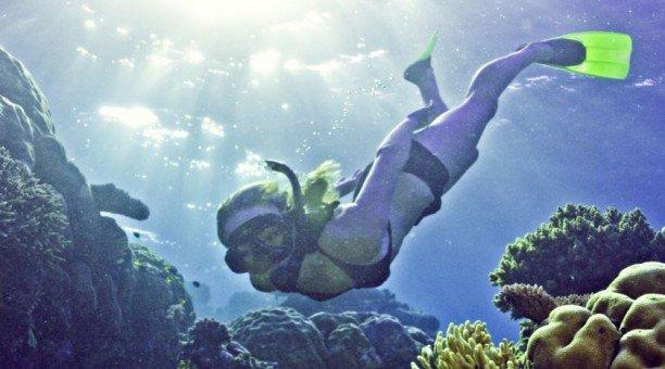 4 Day Top Deck Club Snorkel