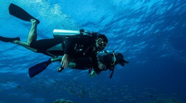 3 Day Reef Resort Dive and Daintree Rainforest