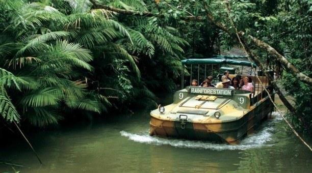Rainforestations Army Duck
