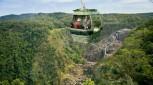 Scenic Train and Skyrail