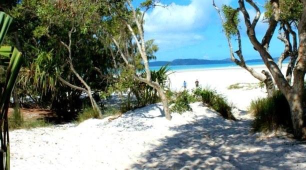 7 km Whitehaven Beach