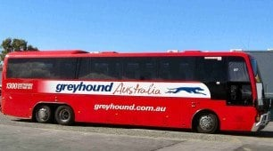 Greyhound Bus Australia