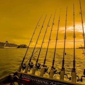 Cairns Sportfishing