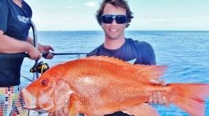 Cairns Reef Fishing, North Queensland Australia