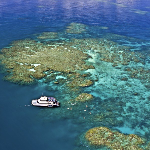 Reef Experience, Cairns Australia