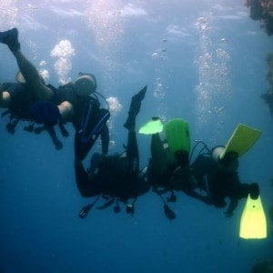4 Day Liveaboard Resort Dive