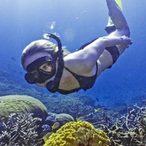 4 day Reef to Rainforest Snorkel Adventure
