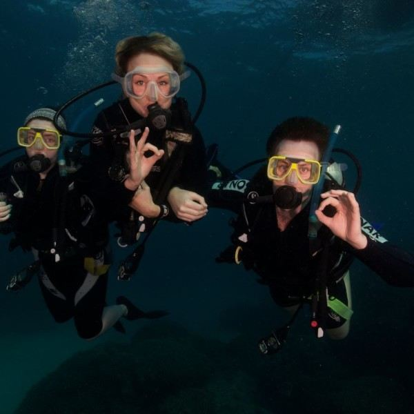 Great Barrier Reef resort dive
