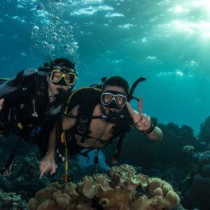 4 Day Liveaboard Scuba Dive