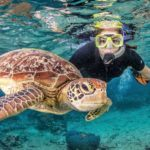 4 Day Reef – Daintree – Kuranda
