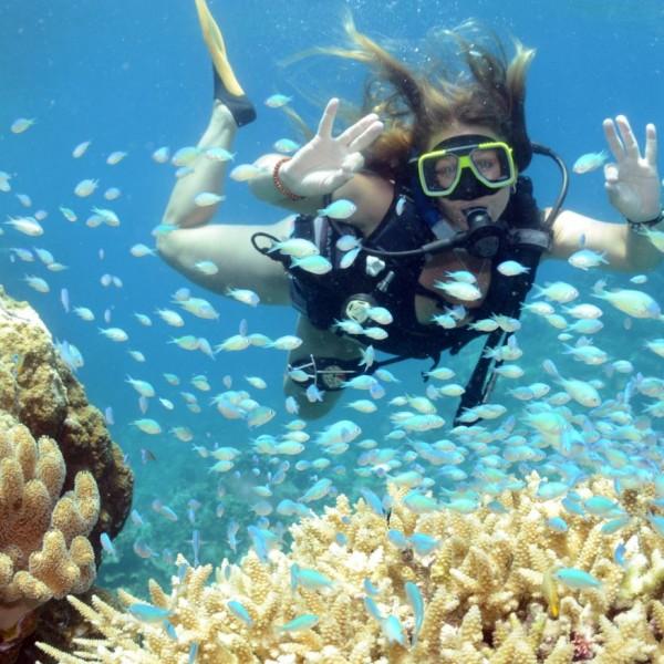 Top Deck Referral Dive Course Reef Encounter