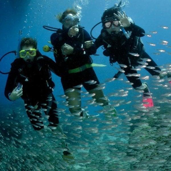 try a resort dive on Australia