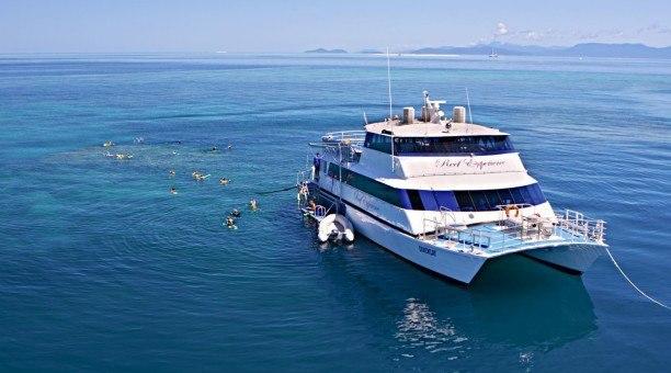 Reef Experience , Great Barrier Reef, Australia