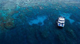 Great Barrier Reef and Kuranda Luxury Experience
