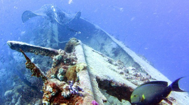 SS Yongala Shipwreck, North Queensland Australia