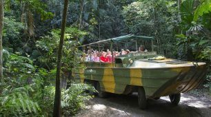 Kuranda Rainforest Tour