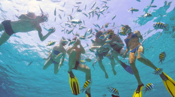 Family snorkeling with fish on the Reef