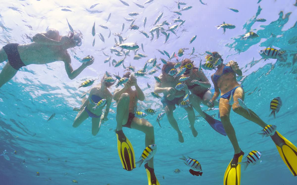 snorkeling01