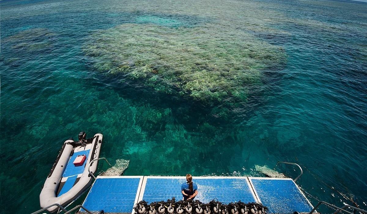 Great Barrier Reef tour Cairns