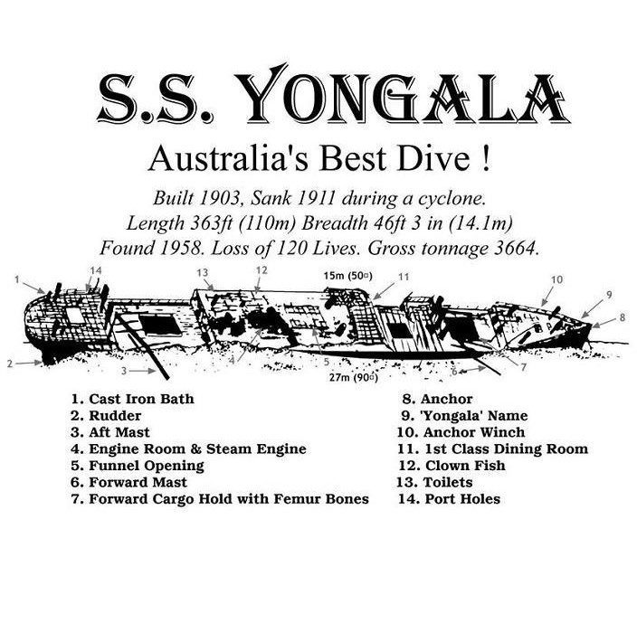 Yongala information