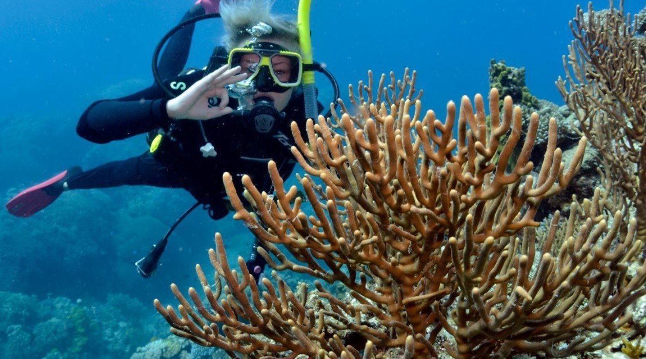 Cairns scuba diving