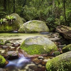 Top Deck Club Scuba and Rainforest Getaway – 4 day